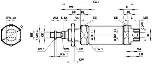 Norgren RM/8020/M/25 Ronde cilinder Slaglengte: 25 mm Afmeting, Ø: 20 mm