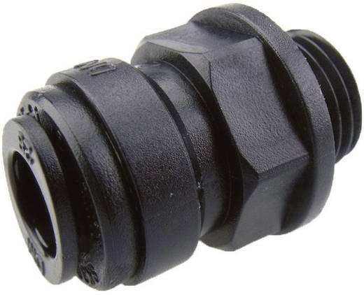 "DM-Fit AMCB0604M Rechte Inschroef Koppeling Insteek 6 mm slang x 1/4"" BSP (parallel)"