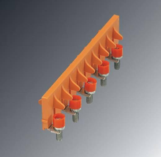Phoenix Contact SB 10-8-T SO SB 10-8-T SO - schakelbrug 10 stuks