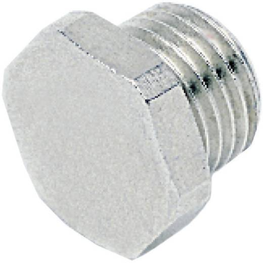 "ICH 30202 Plug zeskante kop G1/8"""