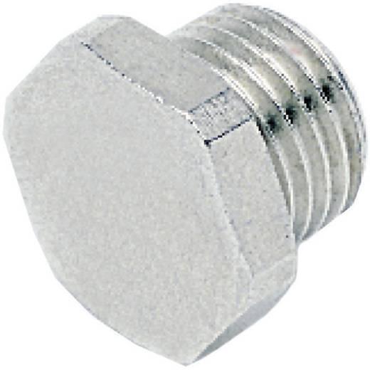 """ICH 30207 Plug zeskante kop G1"""" ms/vernikkeld"""