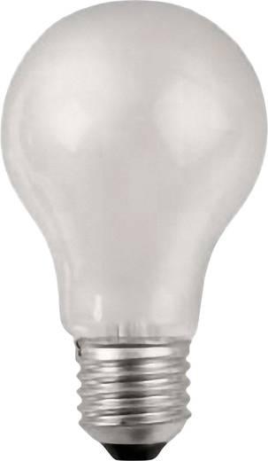 Werma Signaltechnik GLÜHLAMPE E27 25 W 24 V Signaalgever lamp Geschikt voor serie (signaaltechniek) Signaallamp 890