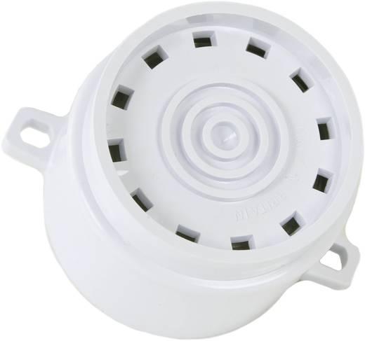 Sirene ComPro Askari Flange Meertonig 12 V/DC, 24 V/DC 101 dB