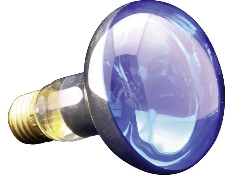 Gloeilamp 86 mm 230 V E14 25 W Blauw Reflector Inhoud 1 stuks kopen