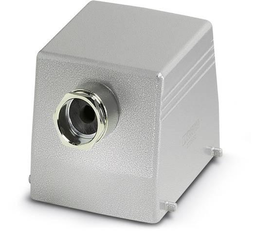 Phoenix Contact HC-B 32-TFQ-80 / M1PG29S Afdekkap 10 stuks