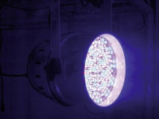 Eurolite LED PAR-64 RGBA LED PAR-schijnwerper Aantal LED's: 177 x