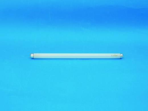 Omnilux buis 15W G13 450x26mm T8 6400 K