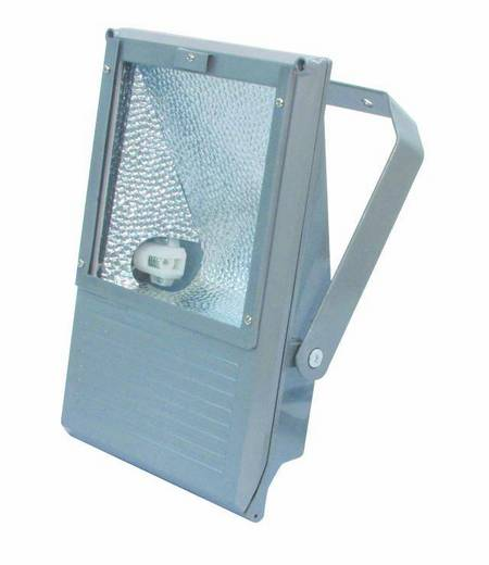 Eurolite 150 W WFL zilver Outdoor floodlight