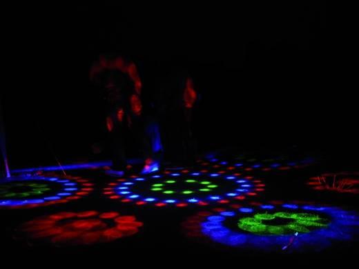 Eurolite LED FX-300 Flowereffect