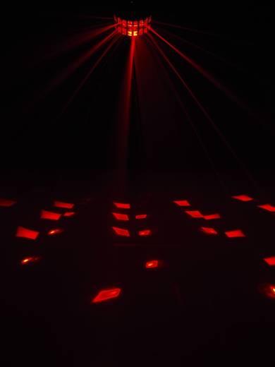 Eurolite LED D-800 DMX LED-lichteffect Aantal LED's:2 x 8 W