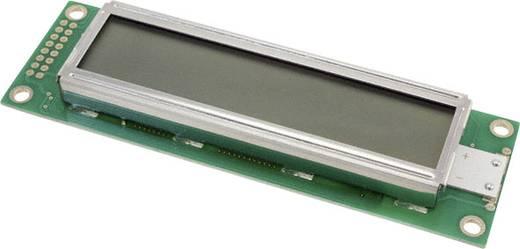 LUMEX LC-display Groen (b x h x d) 37 x 12.7 x 116 mm
