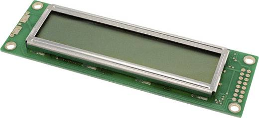 LUMEX LC-display Groen (b x h x d) 37 x 8.9 x 116 mm