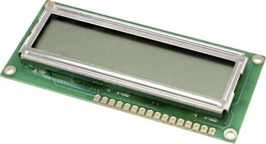 LUMEX LC-display Groen (b x h x d) 36 x 8.8 x 80 mm