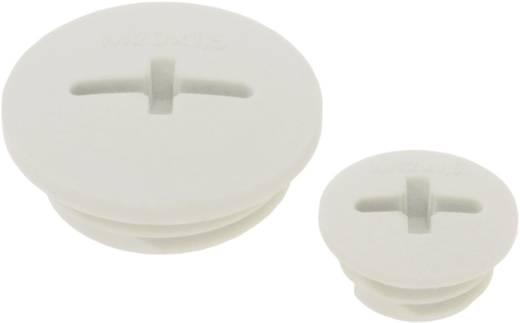 Blindstop M12 M12 Polyamide Lichtgrijs (RAL 7035) LappKabel SKINDICHT® BLK-GL-M12 1 stuks