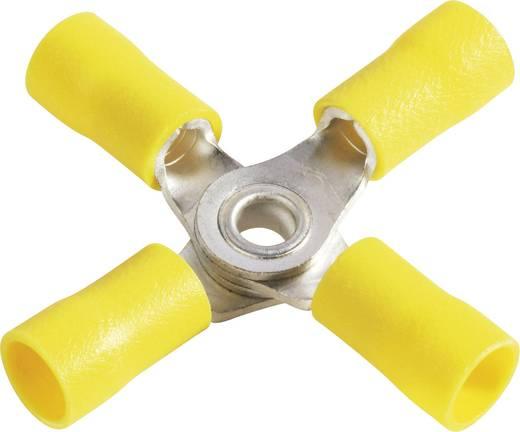 Vogt Verbindungstechnik 3655a4 Splitter Dwarsdoorsnede (max.): 6 mm² Gat diameter: 4 mm Deels geïsoleerd Geel 1 stuks