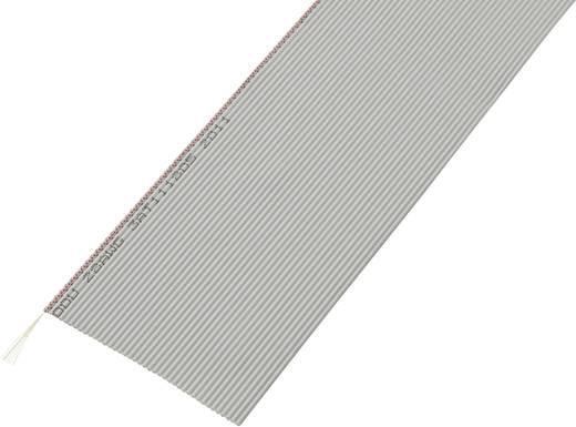 Conrad Components 608903 Lintkabel Rastermaat: 1.27 mm 40 x 0.035 mm² Grijs 30.5 m