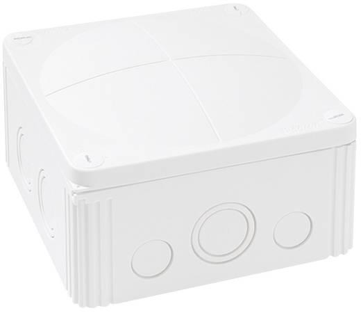 Wiska 10062210 Combi 1010-kabelaftakdoos wit Wit IP66/IP67