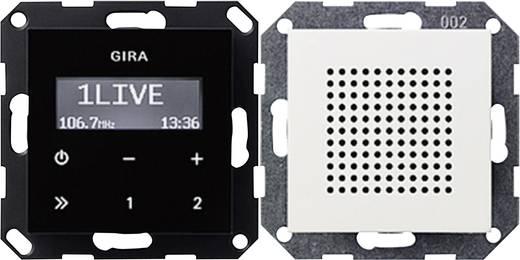 GIRA Inbouw Inbouwradio System 55, Standaard 55 Zuiver wit, Mat 228027