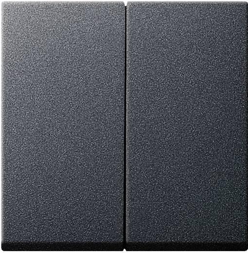 GIRA Afdekking Serieschakelaar System 55, Standaard 55, E2, Event, Event Clear, Event Opaque, Esprit, ClassiX Antraciet 029528