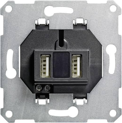 GIRA Inbouw USB-stekkerdoos Standaard 55, E2, Event Clear, Event, Event Opaque, Esprit, ClassiX, System 55 235900