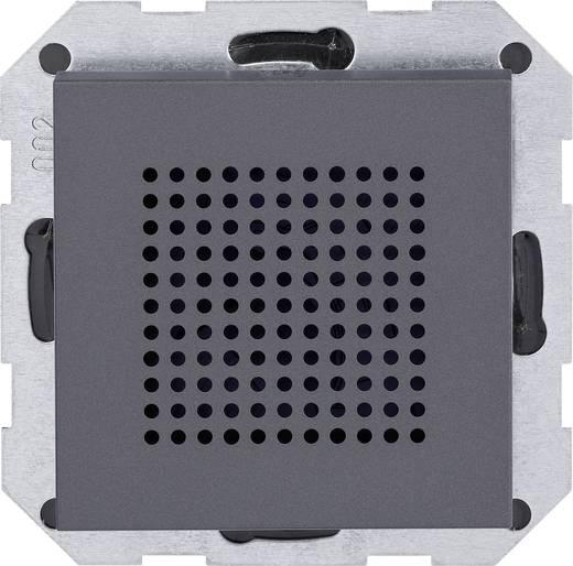 GIRA Inbouw Luidspreker System 55 Antraciet 228228