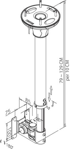 "Monitor-plafondbeugel NewStar Products FPMA-C100 25,4 cm (10"") - 76,2 cm (30"") Kantelbaar en zwenkbaar, Roteerbaar"