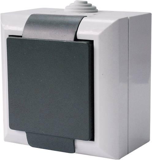 GAO Stopcontact met randaarde Business-Line Grijs 9167