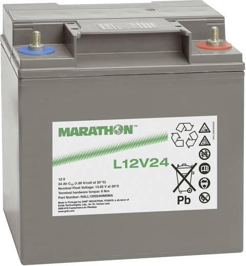 GNB Marathon NALL120024HM0MA Loodaccu 12 V 23.5 Ah L12V24 Loodvlies (AGM) (b x h x d) 168 x 174 x 127 mm M6-schroefaansl