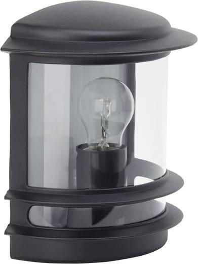 Buitenwandlamp E27 60 W Brilliant Hollywood 47880/06 Zwart
