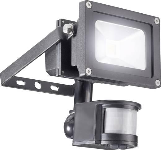 LED-schijnwerper met bewegingsmelder 10 W Koud-wit Zwart