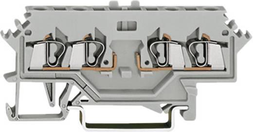 Basisklemblok 5 mm Veerklem Toewijzing: L Grijs WAGO 280-636 1 stuks