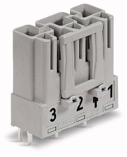 WAGO 770-853 Netstekker Stekker, inbouw verticaal Totaal aantal polen: 3 25 A Grijs 100 stuks