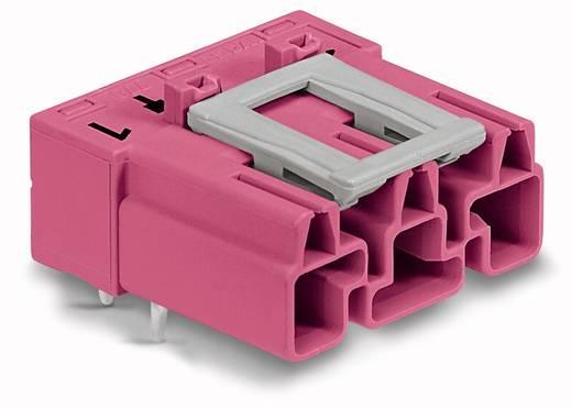 Netstekker Serie (connectoren) WINSTA MIDI Stekker, inbouw horizontaal Totaal aantal polen: 3 25 A Roze WAGO 100 stuks