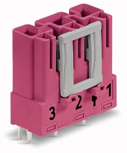 Netstekker Serie (connectoren) WINSTA MIDI Stekker, inbouw verticaal Totaal aantal polen: 3 25 A Roze WAGO 100 stuks