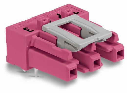 Netstekker Serie (connectoren) WINSTA MIDI Bus, inbouw horizontaal Totaal aantal polen: 3 25 A Roze WAGO 100 stuks