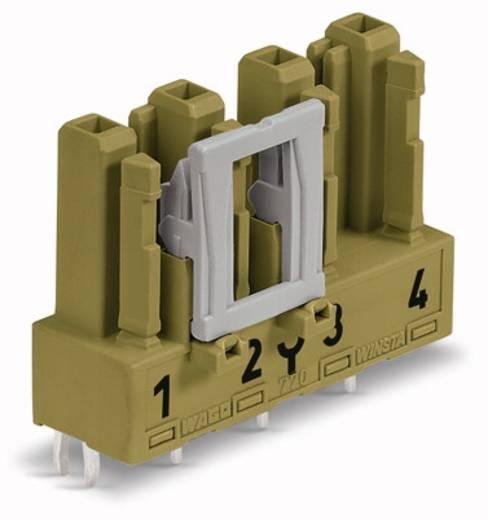 Netstekker Serie (connectoren) WINSTA MIDI Bus, inbouw verticaal Totaal aantal polen: 4 25 A Lichtgroen WAGO 50 stuks