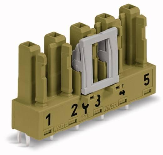 Netstekker Serie (connectoren) WINSTA MIDI Bus, inbouw verticaal Totaal aantal polen: 5 25 A Lichtgroen WAGO 50 stuks