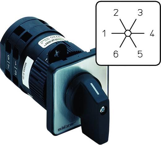 Nokkenschakelaar 20 A 2 x 60 ° Grijs, Zwart Sälzer M220-61052-219M1 1 stuks