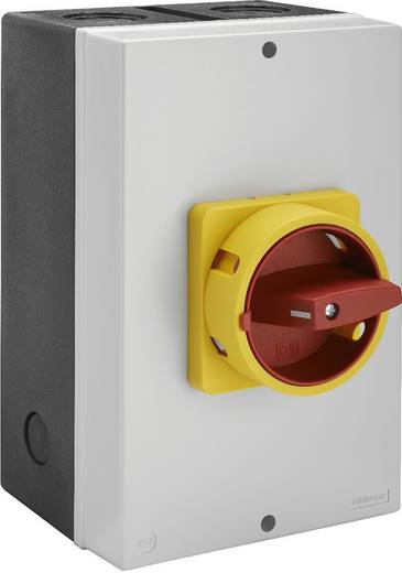 Lastscheidingsschakelaar 100 A 1 x 90 ° Geel, Rood Sälzer H410-41300-730M4 1 stuks