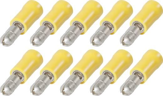 Ronde stekker met PVC-isolatie RPP 5-6 4 tot 6 mm² Aantal polen: 1