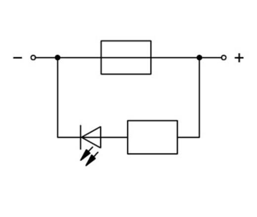 Zekeringsklem 5.20 mm Veerklem Grijs WAGO 2002-1981/1000-414 50 stuks