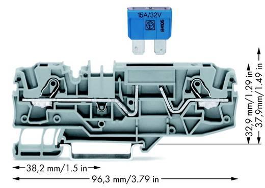 Zekeringsklem 7.50 mm Veerklem Grijs WAGO 2006-1681/1000-414 25 stuks