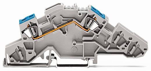 Installatie-etageklem 6 mm Veerklem Toewijzing: L Grijs WAGO 776-650 50 stuks