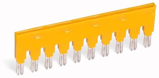 Kambrug Aantal polen: 5 Geel