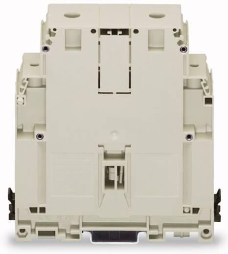 Doorgangsklem 36 mm Schroeven Toewijzing: N Blauw WAGO 400-499/499-706 5 stuks