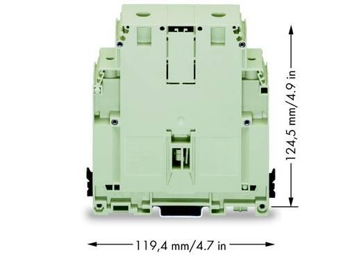 Doorgangsklem 36 mm Schroeven Toewijzing: L Grijs WAGO 400-499/499-704 5 stuks