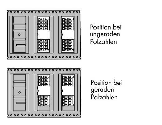 Male header (standaard) Totaal aantal polen 20 WAGO 713-141