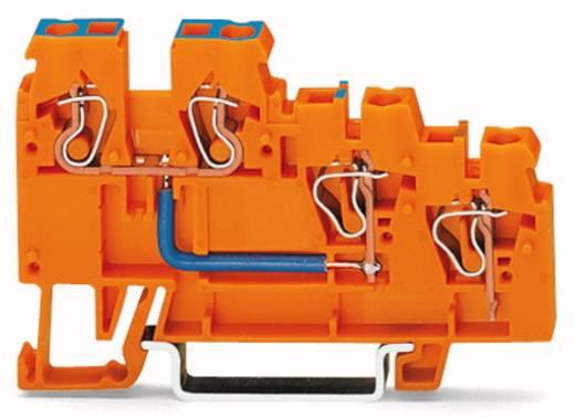Initiatorklemmen 5 mm Veerklem Oranje WAGO 270-564 10 stuks