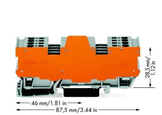 Basisklemblok 5 mm Veerklem Toewijzing: L Grijs WAGO 769-194/769-319 5 stuks