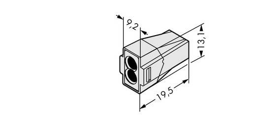 WAGO Lasklem Flexibel: - Massief: 0.75-2.5 mm² Aantal polen: 2 1000 stuks Lichtgrijs